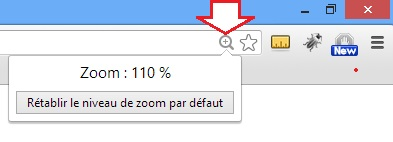 Bouton Zoom Google Chrome