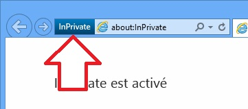 Logo navigation privée d'Internet Explorer