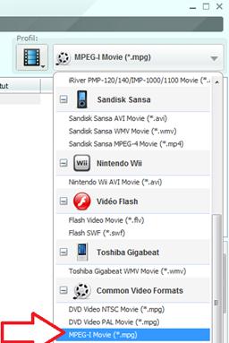 Le format du fichier résultat après convertion de la vidéo