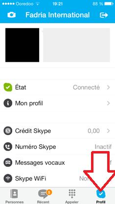 Profil Skype