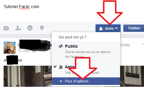 Option de publication Facebook